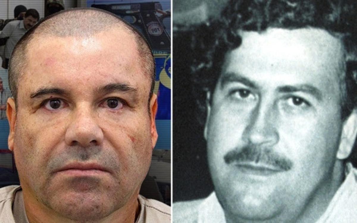 Blackie Sicario De Pablo Escobar Image Mag