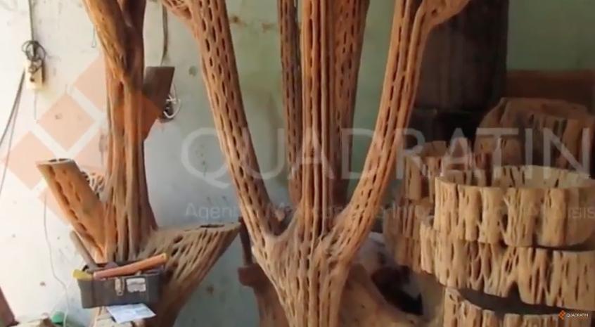 Troncos cobran vida a travs de las artesanas realizadas por