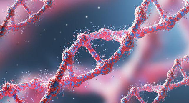 Investigadores explican la relación entre el ADN y el Cáncer
